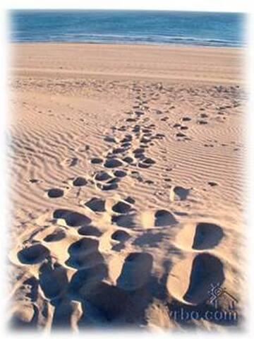 Beachfront Rocky Pt Mex getaway - Puerto Peñasco - Hus