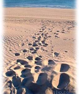 Beachfront Rocky Pt Mex getaway - Puerto Peñasco - Ev