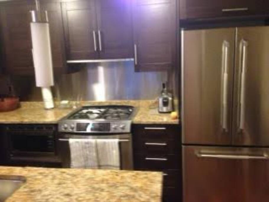 Fully equipped chefs kitchen with gas stove