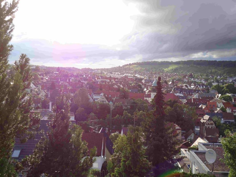 Blick auf das Feuerbacher Tal