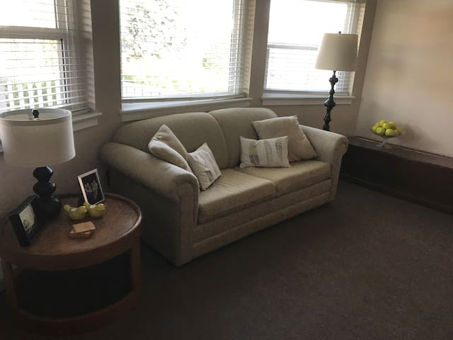 Comfortable living room.  Wool carpet, gas fireplace, reading lamps, etc.  No TV