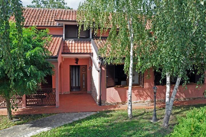 Birches Villa