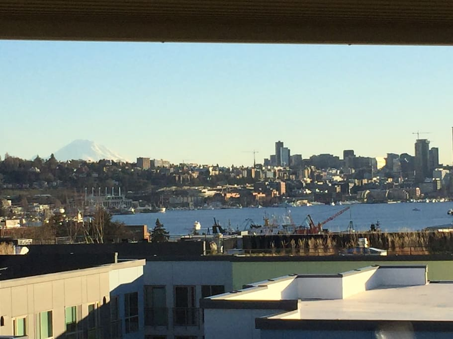 Mt. Rainier, Downtown Seattle  Lake Union!  Spectacular view over neighboring rooftops.
