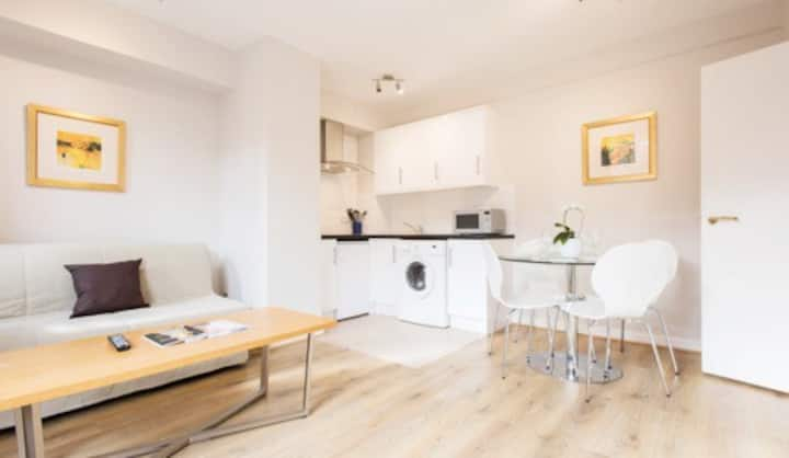Beautiful One Bedroom Apartment in Chelsea - CC