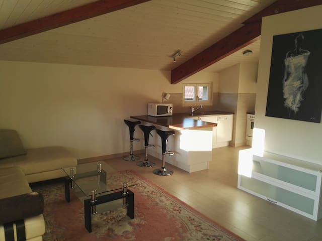 Beautiful apartement fully equiped, two bedrooms ! - Vessy - Leilighet