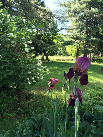 The Flower Room (Hudson Valley Farmhouse)