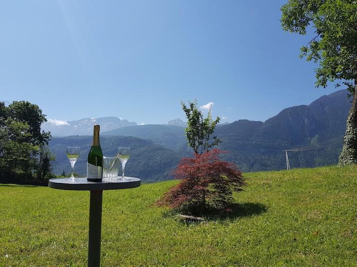 Grand T3 avec vaste jardin au coeur des Alpes
