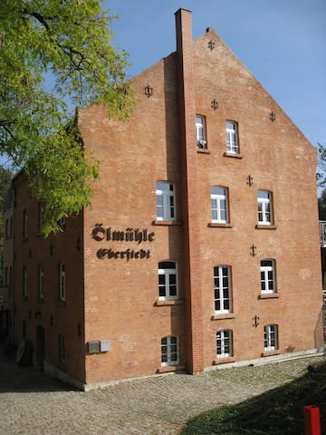 Cosy apartment in historical mill - Eberstedt - Apartment