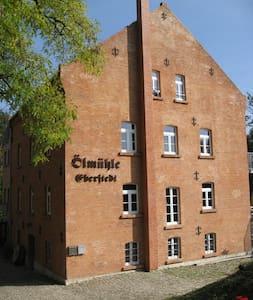 Cosy apartment in historical mill - エーバーシュタット