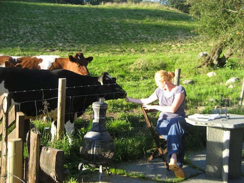Be a guest at my farm.
