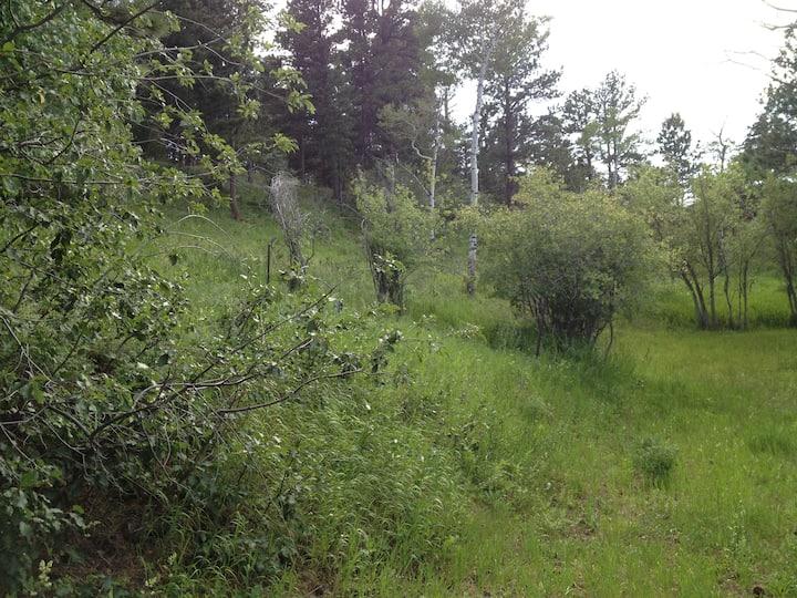 peaceful quiet clean newer camper (running water)