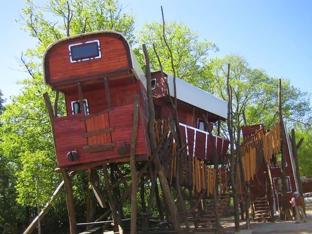 Baumwaggonhotel - Hollenbek - Cabana en un arbre
