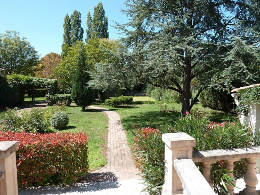 View of the garden from the terrace