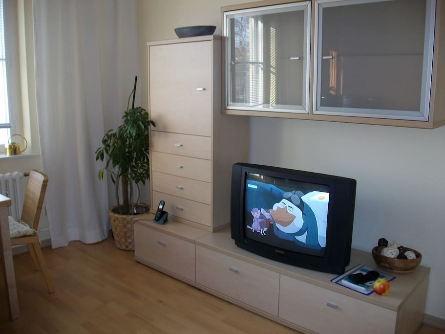 comfortable apartment in berlin zehlendorf apartments for rent in berlin berlin germany. Black Bedroom Furniture Sets. Home Design Ideas