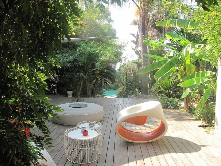 maison avec piscine jardin tropical