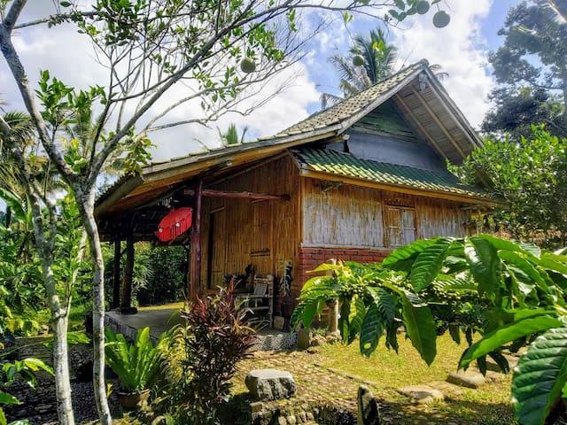 Batukaru Mountain Farmstay - Small