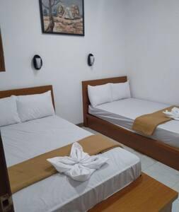 Twin Bed - Bale Dzakyla Homestay & Restaurand