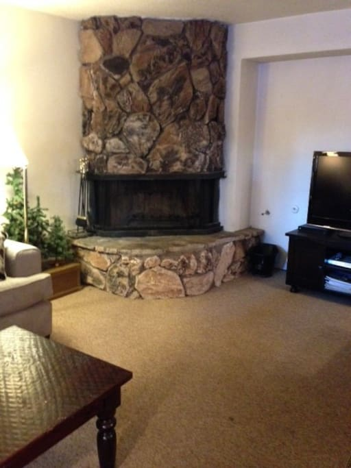Wood burning gas fireplace. 42 inch Plasma TV. Charter cable TV