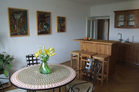 Apartment with great City View, 5th - Wien - Huoneisto