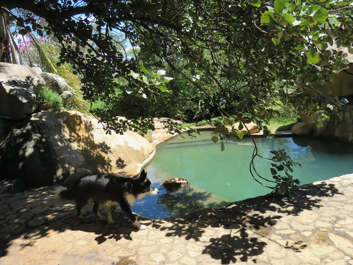 Pet friendly, great walks, easy commute to Harare.