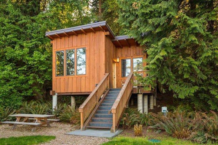 Cabin 11 Matia