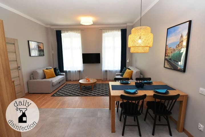 Comfortable and bright apartment/Old Town