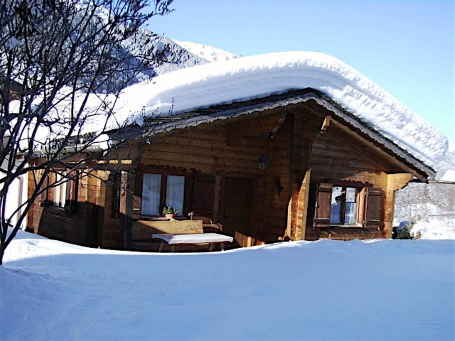 Hüsli Alpenrose im Winter