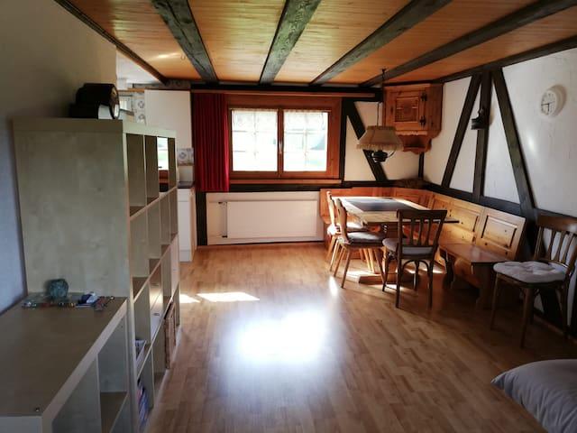 """Grosse 2 Zimmer Wohnung """"Natur pur"""""""