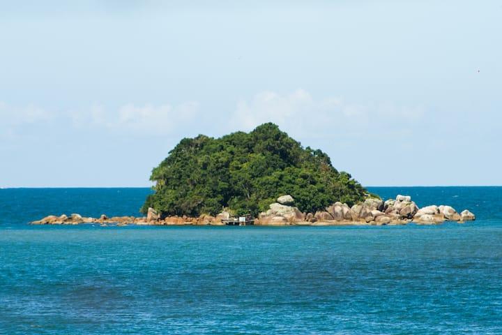 Ilha Panek - Baia dos Golfinhos #ilhapanek