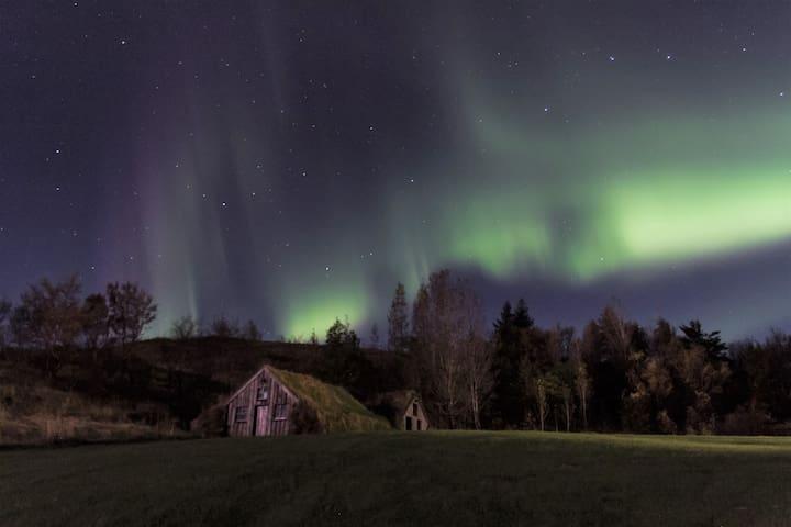 Dalshöfði Guesthouse-Triple room
