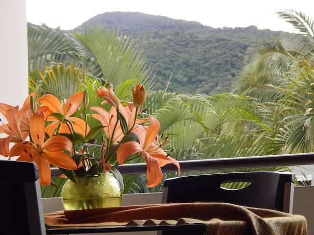 Costa Rican Vacation Space