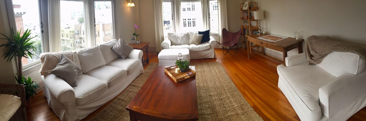 Classic & Spacious Pacific Heights Apartment
