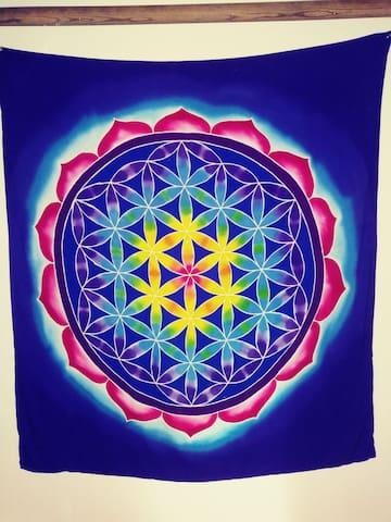 Blue Buddah Room