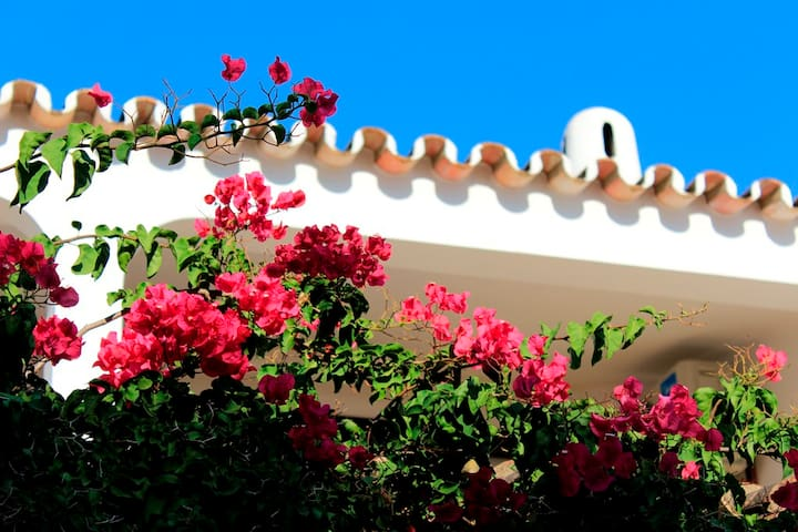 Charming Townhouse in 5 Star Resort in Algarve - Almancil - Tatil evi