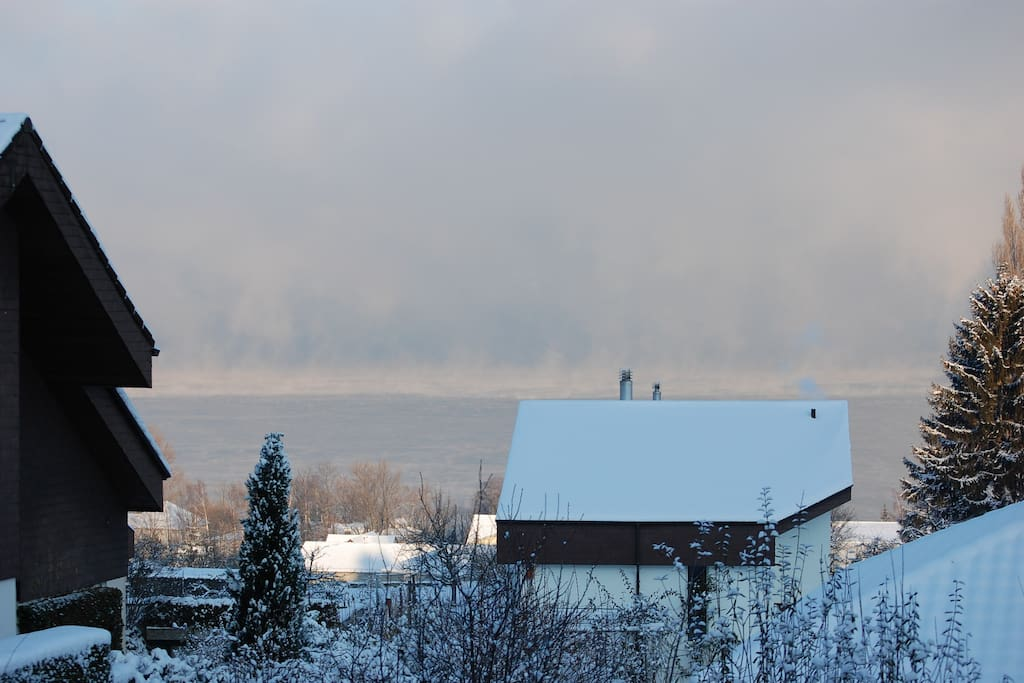 Winter View over Lake Constance