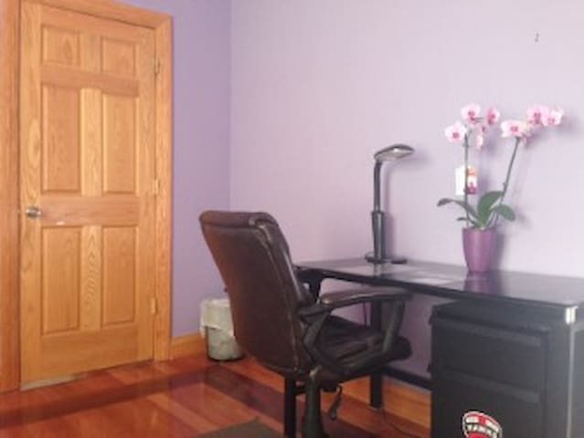 Private Room near O'Hare and CTA Blue Line Station - Chicago - Apartemen