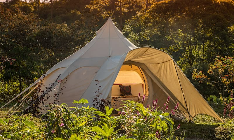 Kinkara Signature Lotus Belle Tent (Two Twin Beds Tent)