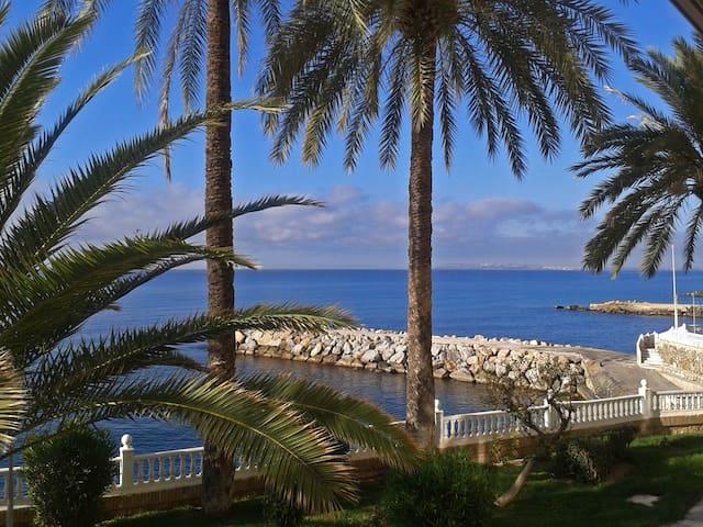 Alquilo habitación frente al mar