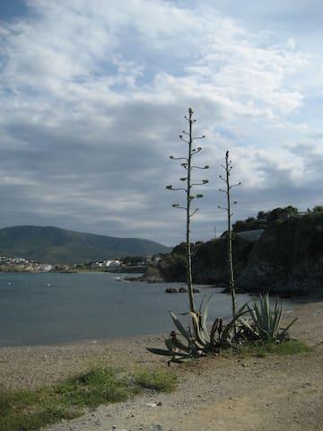 maison avec jardin en bord de mer - Llançà - Casa