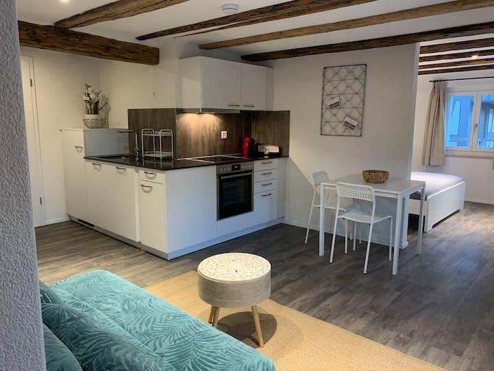 Möblierte Wohnung in Wettingen 22