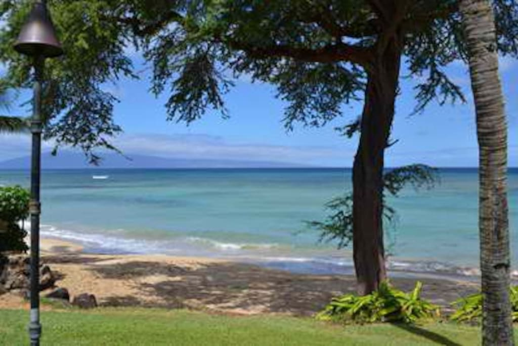 It will seem like your own private beach. Great swimming and snorkeling.