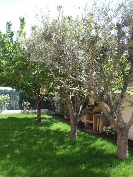 jardin avec potager et arbres fruitiers