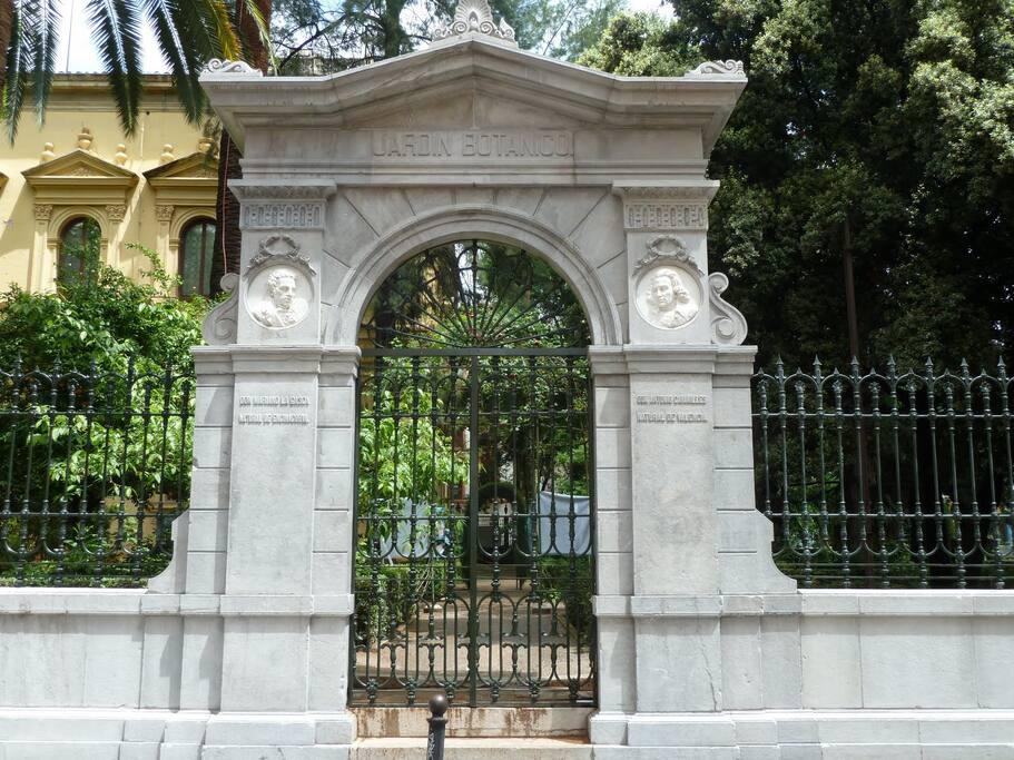 Puerta del Jardín botánico. Vista desde el salón