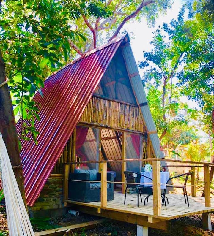 Ecolodge-cabañas n1 in a preserve island