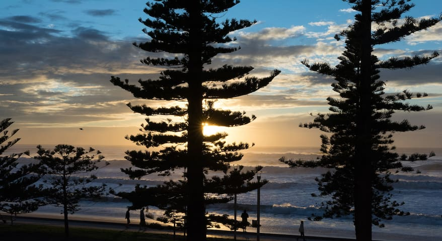 Sun drenched beach pad! Spectacular Location. - Manly - Huoneisto