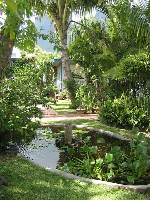 entrée du bungalow dans le jardin exotique
