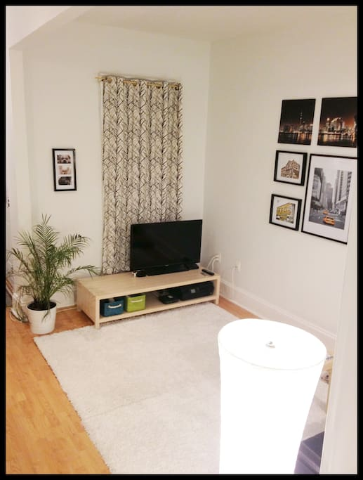 Living Room with Applie TV and Netfllx