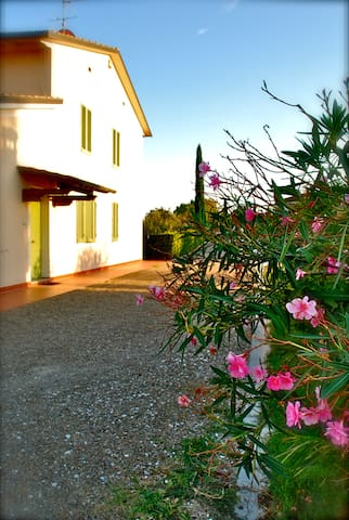 Holidays House Il Gallo - Pisa - Montopoli - Byt