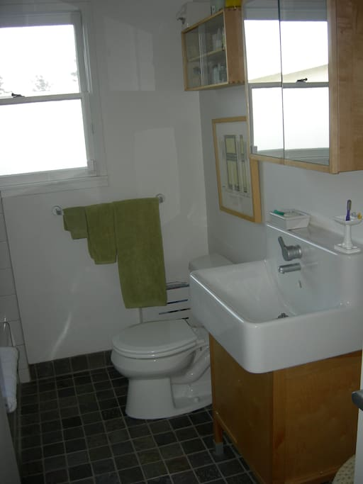 Updated bathroom with tub and shower.
