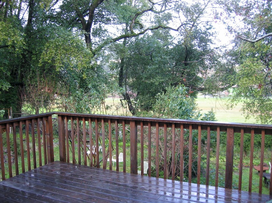 This is the view that you will see looking out from the back deck adjacent to this medium size bedroom room.